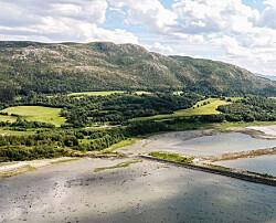 «Den grønne industrien er en gavepakke til norsk industri»